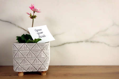 Open your mind text handwritten on sticky note with fresh blossoming flower, self development and improvement concept