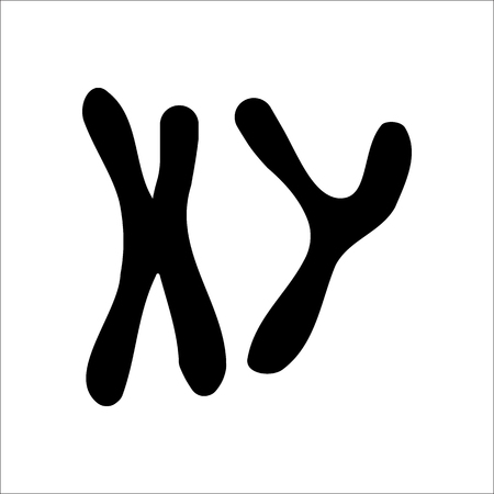 chromosome x y: X and Y chromosome sign silhouette symbol icon on background