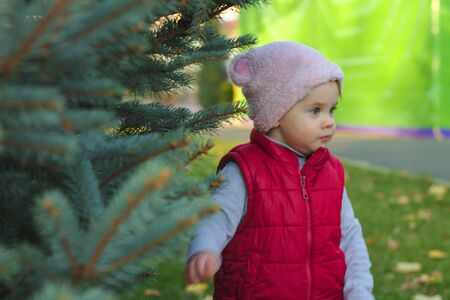 A small child in a fluffy pink hat and red vest is standing near a pine in the autumn park. Beautiful fall sunny day outdoors. 写真素材 - 133550150