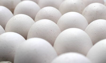 An isolated tray of eggs from recycled materials with white eggs on a white background. Selective Focus