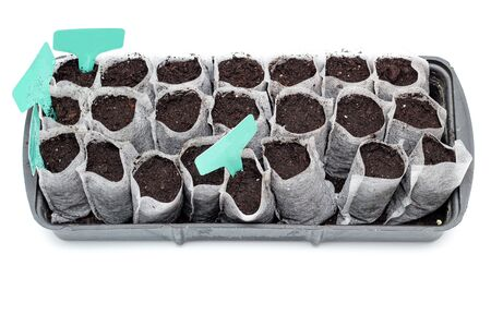 White woven fabric bags with soil in a black plastic container against white background. Isolated home sprouting seedlings process in the ground. Name plates in the dirt.
