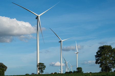 hill station tree: Wind turbine farm - renewable energy, sustainable energy  and alternative energy Stock Photo