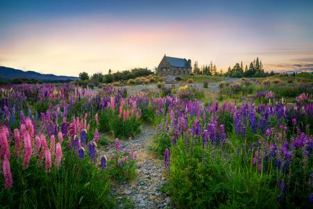 Église au lac Tekapo au lever du soleil dans le paysage de la Nouvelle-Zélande. L'église du Bon Pasteur a été construite sur le paysage du lac Tekapo à la gloire de Dieu en mémoire des pionniers de la Nouvelle-Zélande. Banque d'images