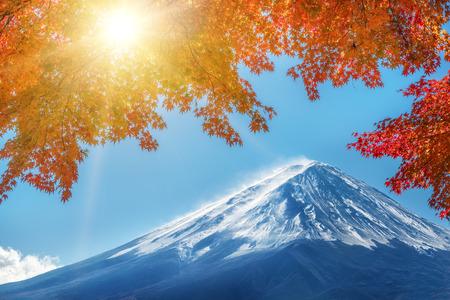 Kleurrijke herfst in Mount Fuji, Japan - Lake Kawaguchiko is een van de beste plaatsen in Japan om te genieten van het Mount Fuji-landschap van esdoornbladeren die de kleur veranderen die het beeld van die bladeren geeft die Mount Fuji inlijsten.