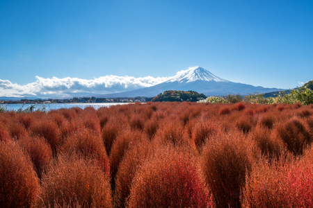 winter sunrise: Autumn in Mount Fuji, Japan - Lake Kawaguchiko is one of the best places in Japan to enjoy scenery of Mount Fuji . Stock Photo