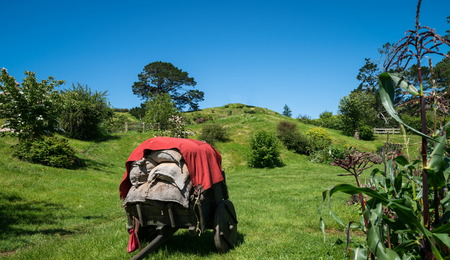 Countryside landscape in summer. Home botanical garden scenery. Beautiful old farm land and agriculture industry. Stock Photo
