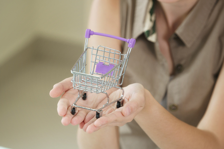Woman holding a small shopping trolley. Concept of online shopping and delivery service.