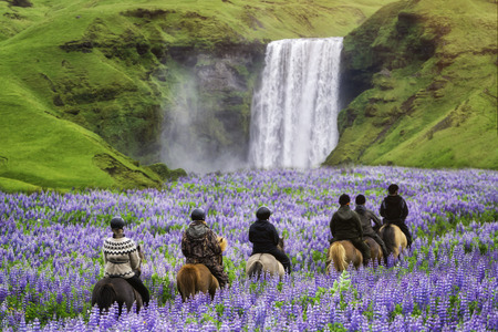 Tourists ride horses at the majestic Skogafoss Waterfall in countryside of Iceland in summer. Skogafoss waterfall is top famous natural landmark and travel destination place of Iceland and Europe.
