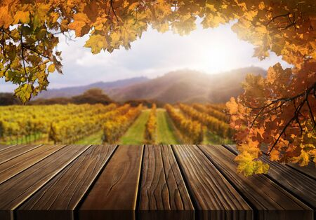 Brown wood table in autumn vineyard landscape with empty copy space on the table for product display mockup. Winery and wine tasting concept. Stockfoto