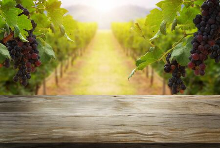 Brown wood table in green spring vineyard landscape with empty copy space on the table for product display mockup. Agriculture winery and wine tasting concept. Stockfoto