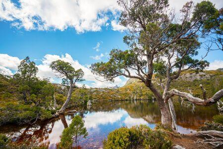 Nature landscape in Cradle mountain national park in Tasmania, Australia.