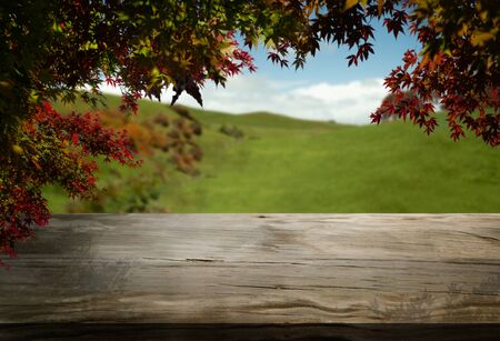 Wood table in autumn landscape with empty copy space for product display.