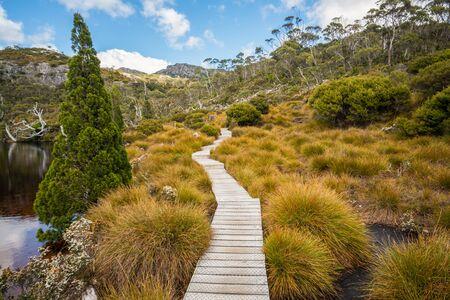 Naturlandschaft im Cradle Mountain National Park in Tasmanien, Australien.