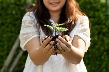 Young plant tree sprout in woman hand. Concept of farming and environment protecting. Foto de archivo - 131291411