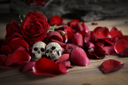eternal: Still life photo with skull and rose to the concept of eternal love.