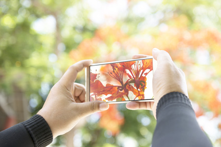 easier: The camera on the phone, Technology makes taking pictures easier with a camera phone. Stock Photo