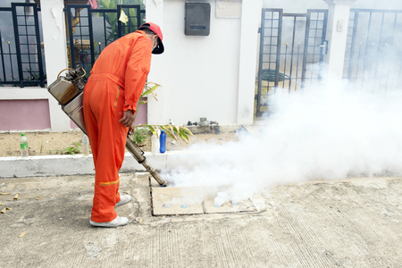scourge: Municipality made by injection to control scourge of mosquitoes.