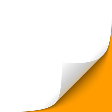 오렌지 배경 웅크 리고 종이 코너