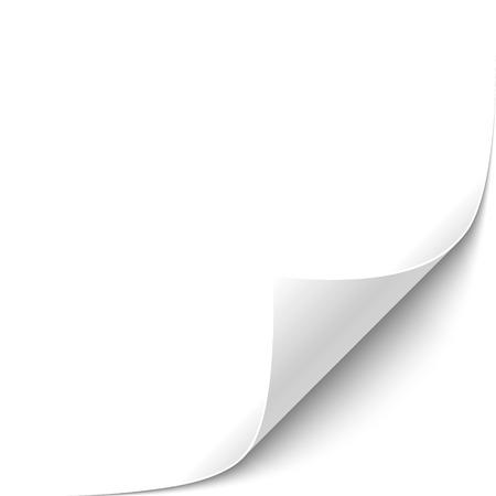 Gekruld Witboek Hoek met een witte achtergrond