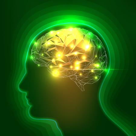 pensamiento creativo: Silueta principal abstracta humano con un cerebro. Ilustraci�n com�n del vector Vectores