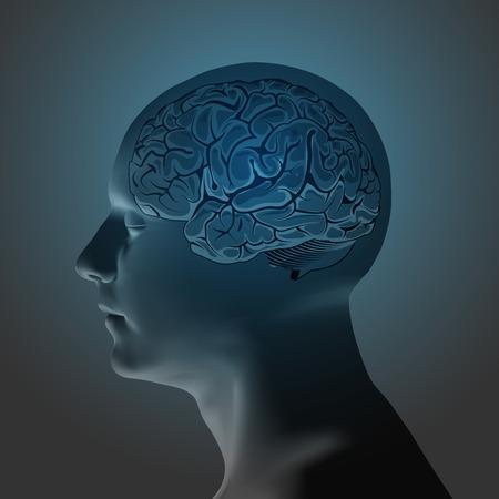 instinct: Abstract Human Head with a Brain. Stock Vector Illustration Illustration