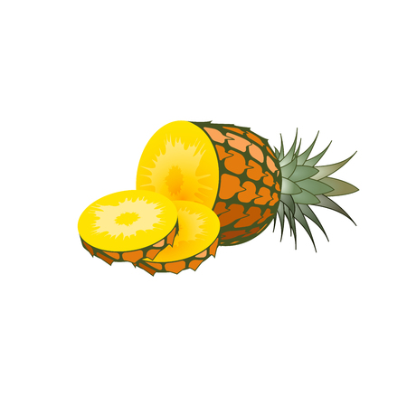 health collage: pineapple fruit. Isolated pear on white background. Piece of pineapple. Vector illustration of pineapple. Illustration