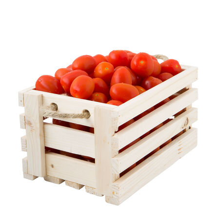 Crates of tomatoes in a white background photo