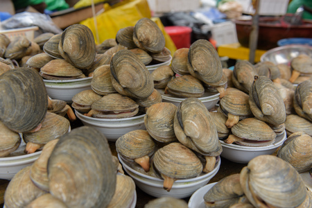 Fresh mussels sold on Busan fish market
