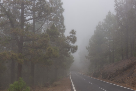 Low visibility conditions on mountain road Stock Photo