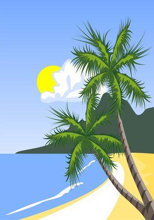 Palm tree on the tropical beach Vector