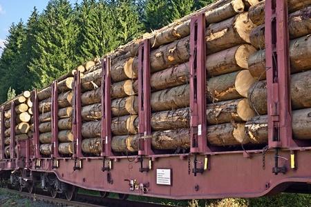 logging railroads: Trasporto di tronchi di legno Archivio Fotografico