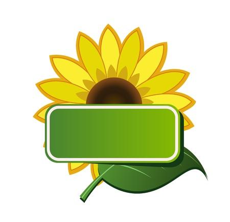 Vector sticker and sunflower Illustration