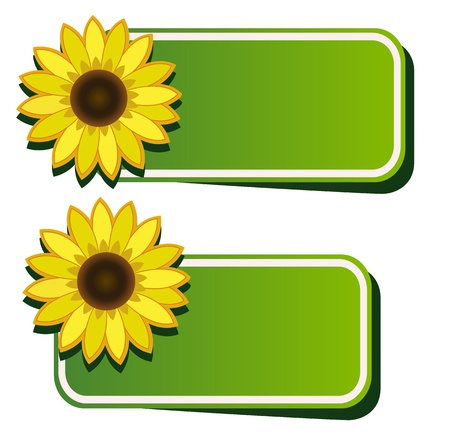 peeling corner: Vector stickers and sunflower