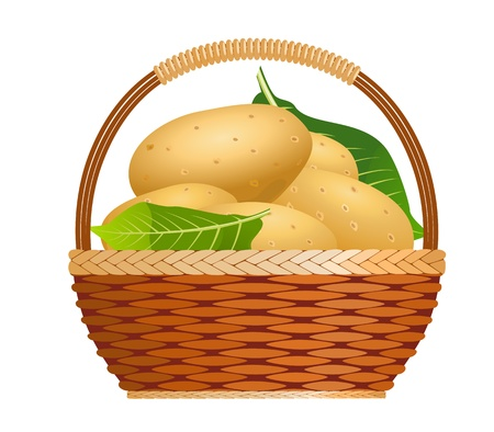 unpeeled: Raw potatoes in a basket Illustration