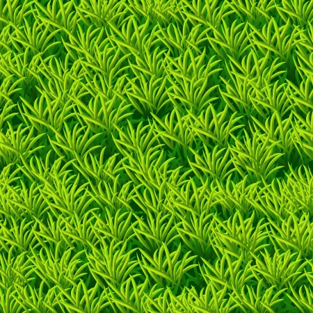 Vector green grass