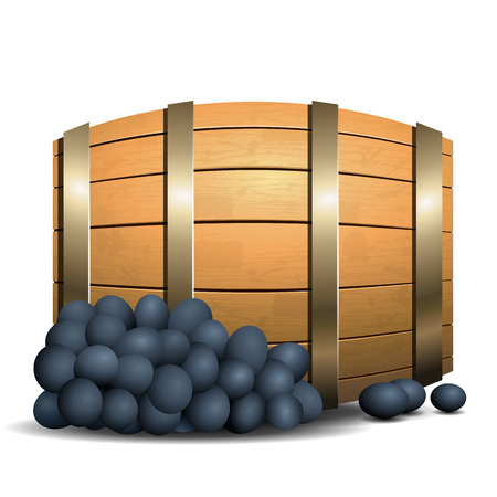 Wine barrel and grapevine on white background Vector