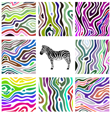 Colorful abstract illustration set of zebra pattern Vector