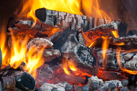 coal fire: Wood logs burning in the fireplace