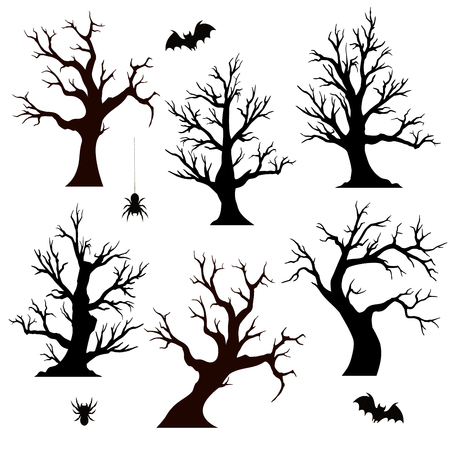 haunted: Halloween trees, spiders and bats on white background
