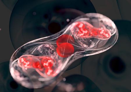 coagulate: Cells, bacteria or virus