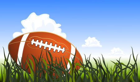 grass close up: Close up of an american football on the field, vector illustration Illustration