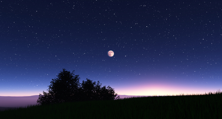 Night landscape with stars and the full moon, 3D illustration