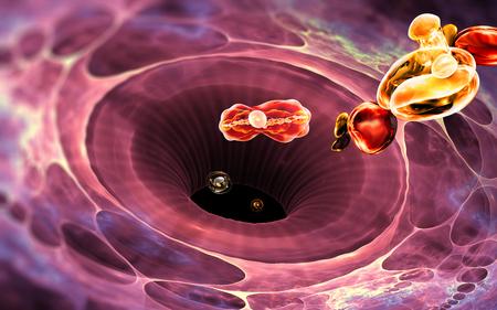 Immune system cell. White blood cell eats bacteria. 3d illustration