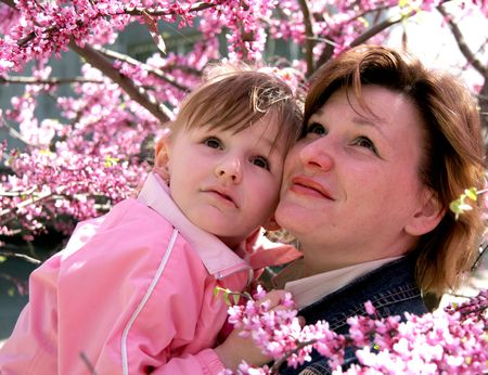 mother and daughter stay in the middle of pink blossomed trees