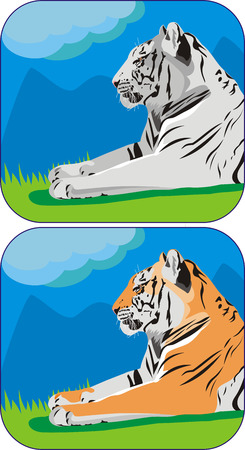 close-up illustration of tiger resting at nature Stock Vector - 5993245