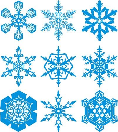 fiocchi di neve differenti Vettoriali