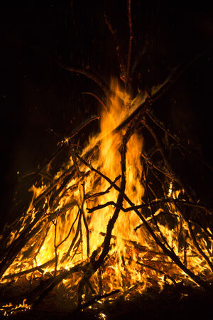 woodfire: close-up big campfire at the night