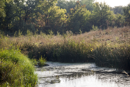 cane creek: still hush river with rusty banks Stock Photo