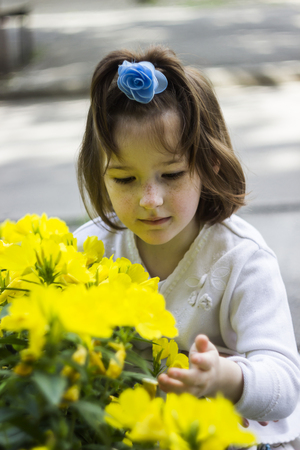 portrait of little girl with blossoming flowers of common evening-primrose Stock Photo