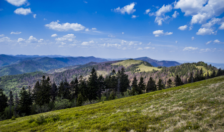 view of landscape of the carpathian mountains from peak of Parashka mount, national park Skolevski beskidy, Lviv region of Western Ukraine
